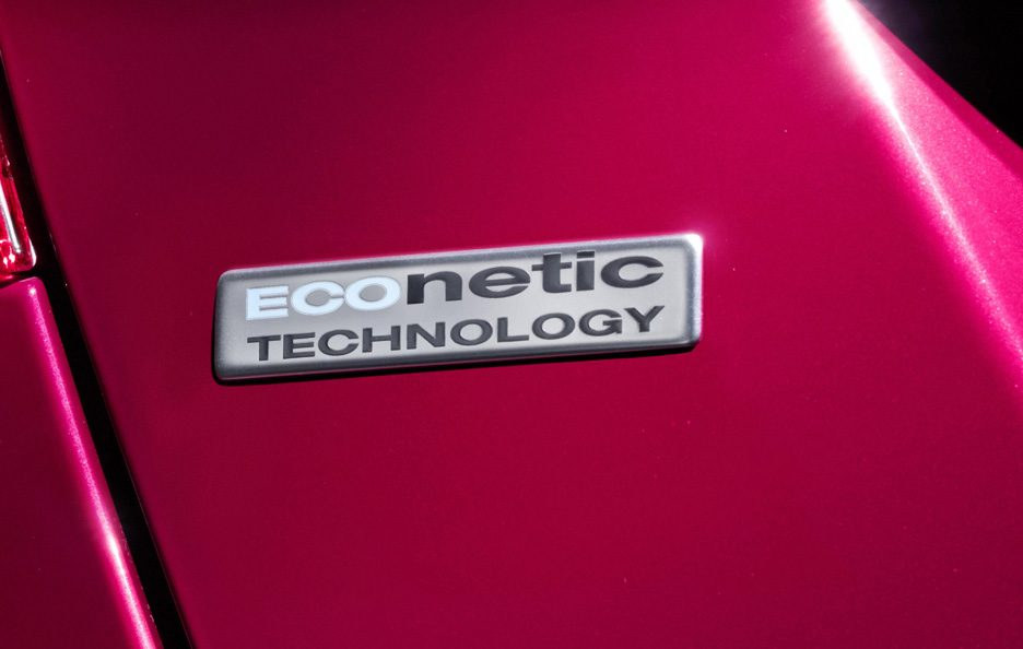 10 - Ford Fiesta ECOnetic logo ECOnetic