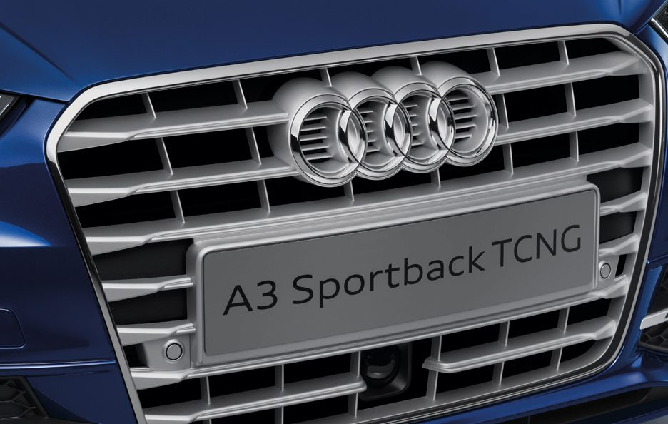 Audi A3 Sportback 2013 - Tcng - Griglia frontale