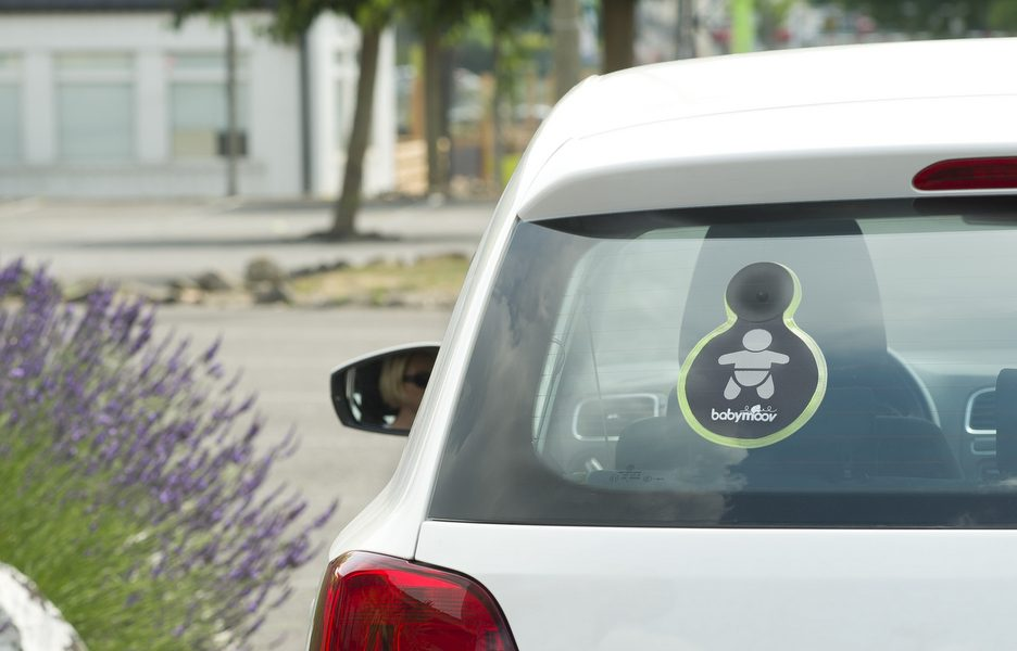 A103011-Baby on board-in the car - day