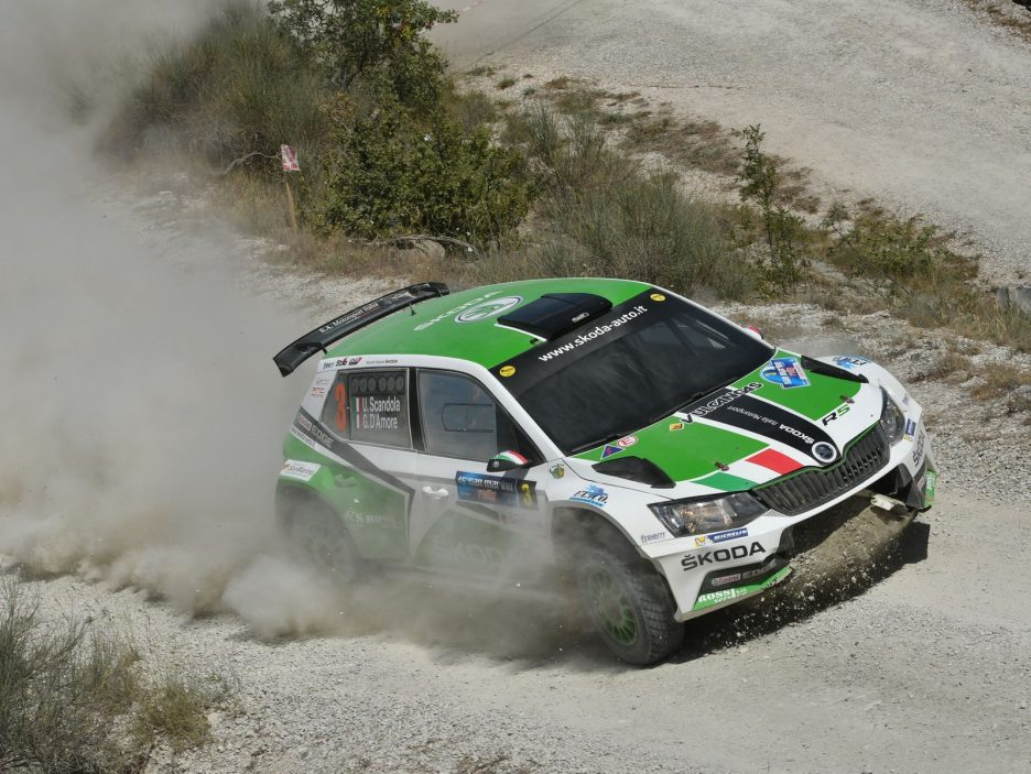 Umberto Scandola, Guido D Amore (Skoda Fabia R5 #3, Car Racing)